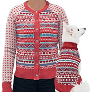 Matching dog and owner christmas jumper